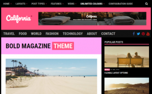 California WordPress theme